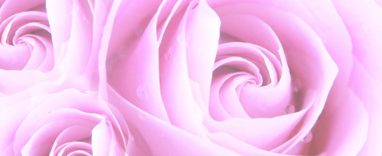 Les Fleurs Divines